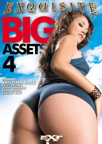 Description Big Assets Vol 4