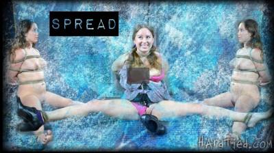 Hardtied — Dec 14, 2011 - Spread Part One
