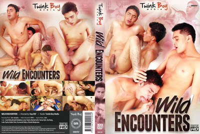 Description Wild Encounters