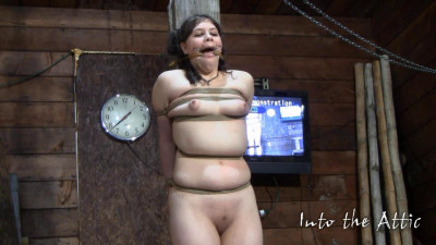 IntoTheAttic Pack & Clips4Sale Videos, Part 1