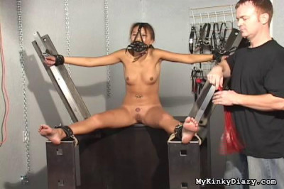 My Kinky Diary Video Collection 4