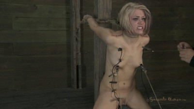 Sybian Bound, Zippered and Throated