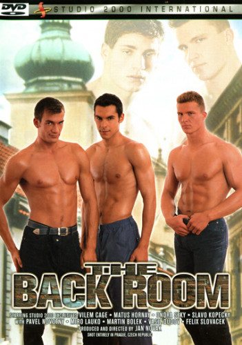 Description The Back Room - Vilem Cage, Matus Hornay, Pavel Novotny