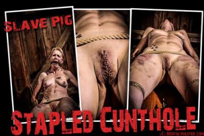 BrutalMaster – Pig – Stapled Cunthole