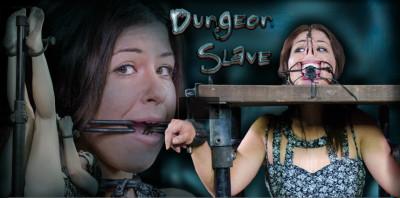 Infernalrestraints - Mar 07, 2014 - Dungeon Slave - Mia Gold