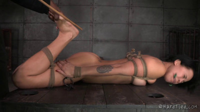 HardTied The New Girl Part One Mia Austin