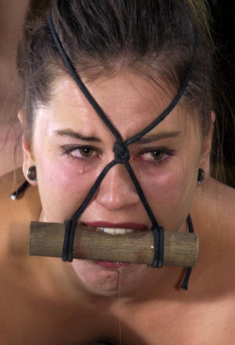 Slutty Bitches Punishment