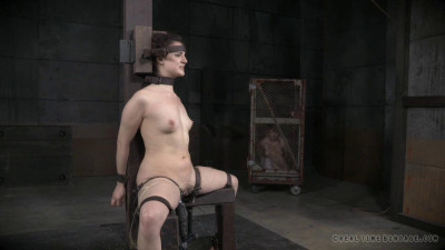 Description Endza Bondage Monkey Part 3