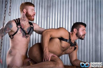 dp — Ginger Bred (Seth Santoro & Bennett Anthony) Bareback