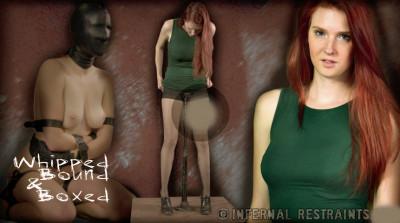 Infernalrestraints – Feb 28, 2014 – Whipped, Bound And Boxed – Ashley Lane