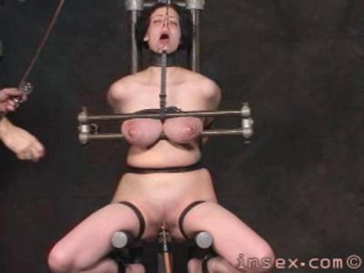 Insex — 101 Test