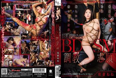 BDSM training training volunteer Sakura Nene