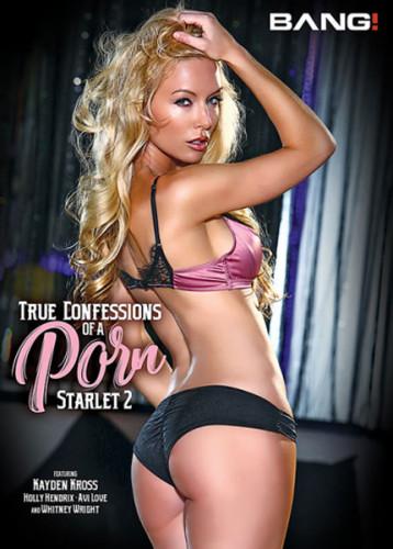 Real Confessions Of A Porn Starlet vol 2(2018)