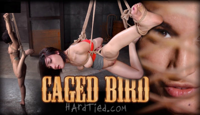 Caged Bird Will Never Be Outside