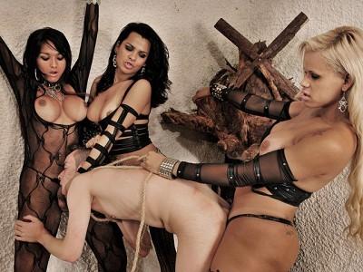 Kinky Tranny Trio Dominates