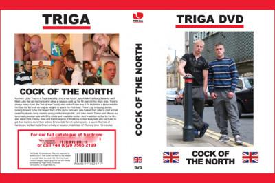 Description Cock Of The North