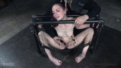 Description Ivy Addams Pit Pull