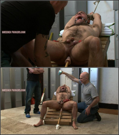 Guy11-l - Tied with hairy body on display, balls weighed down