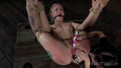 Flexi-bitch  – Sarah Jane Ceylon