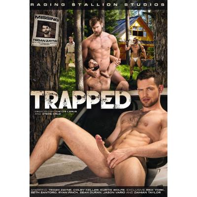 Description Trapped Sean - Damian Taylor & Rikk York - 720p