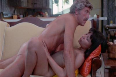 Description Woman's Torment (1977) - DFS Enterprises,Vinegar Syndrome DVD