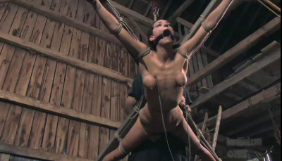 Then shes whipped and vibrated to come, strangling just a little more, and then a little more