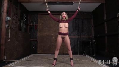 HD Bdsm Sex Videos Best SocietySM part 29