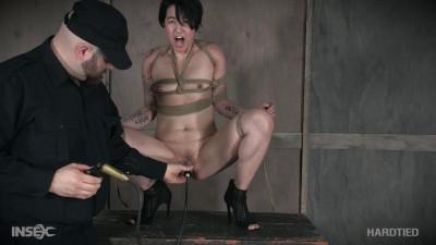 Mia Torro Vulvastic (2017)