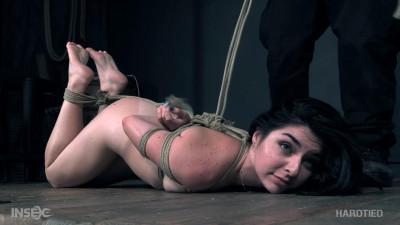 BDSM Keira Croft (Pussy Raider