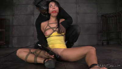 Description HardTied The New Girl Part One Mia Austin