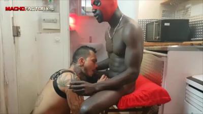Afrobare Assdestroyer (Pablo Bravo)