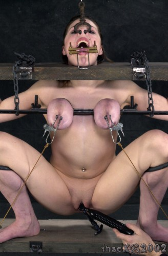 Insex - Piglets's Training (1203's Training)