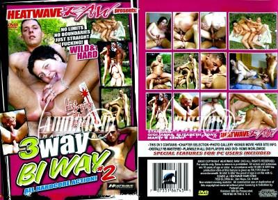 Description 3 Way Bi Way 2