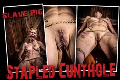 BM - Pig - Stapled Cunthole