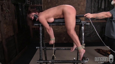 SocietySM - Come watch what we do to these helpless models - Part 11