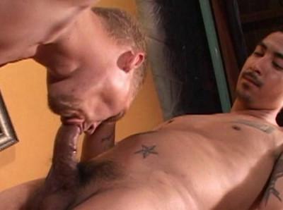 Bareback Horny Sluts