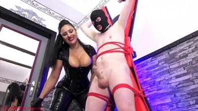 The 80 Cumshots Of 2016 Compilation - Mistress Ezada Sinn - HD 720p