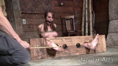 Alisha Adams BDSM, Humiliation, Torture (2012)