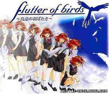 Flutter of Birds - Virgin Touch