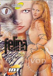 Description Felina