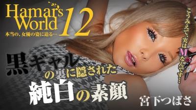 Miyashita Tsubasa - Hamar's World 12: A Tanned Punk Girl With Innocence