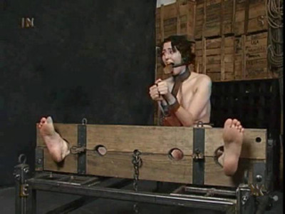 Description Insex - 202's training
