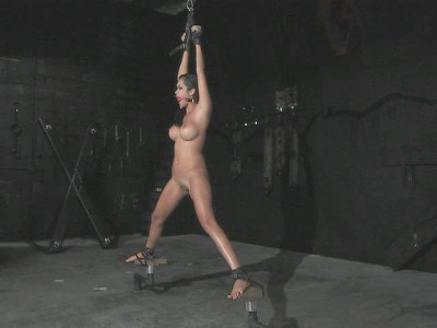 Strict Restraint Video Collection 3