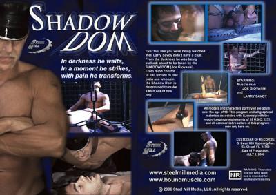 Description Shadow Dom