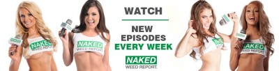 Naked Weed Report tommyganZ