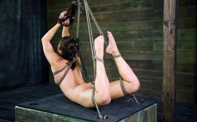 Sexy Gymnast Disciplined Hard