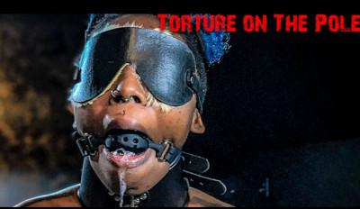 BM Fuckmeat Torture On The Pole