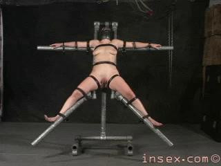 """Big Best Collection Clips 43 In 1 , """"Insex 2001″. Part 1."""