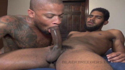 BlackBreeders – XL and Anthony Grey
