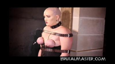 Brutal Master - Garbonzo Beans Torture For Missy